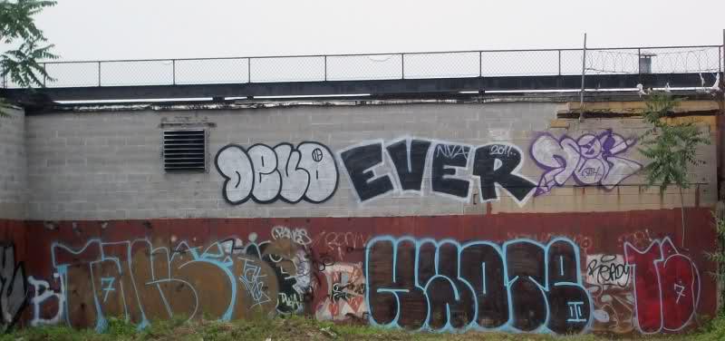 DEVO · EVER NVA 2011 · NEG
