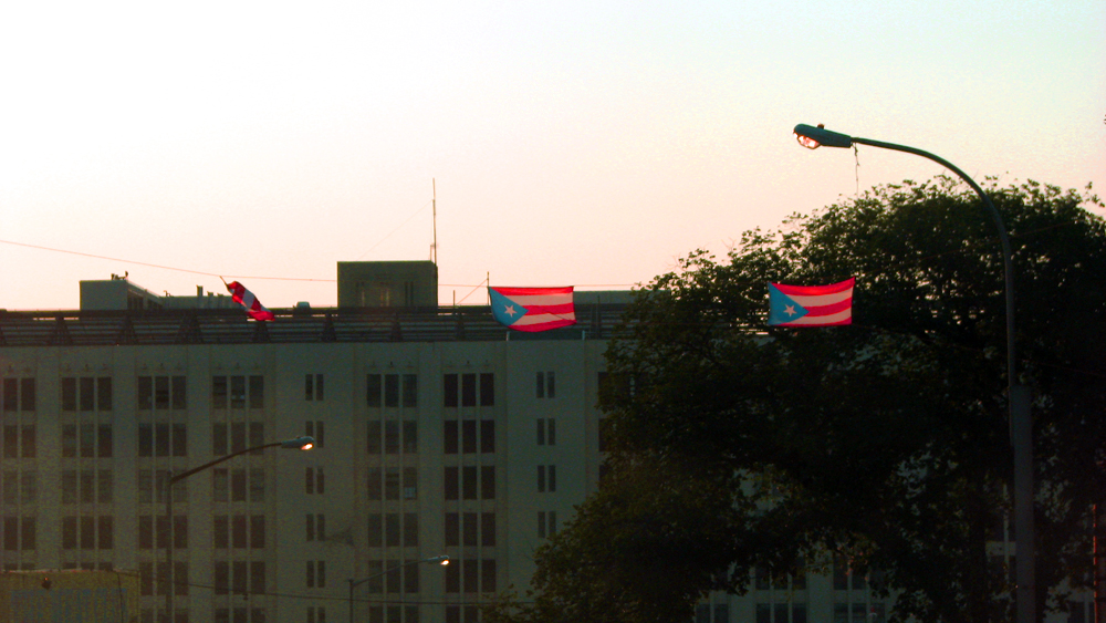 Puerto Rico Flags - 2nd Avenue - Sunset Park, Brooklyn, NY