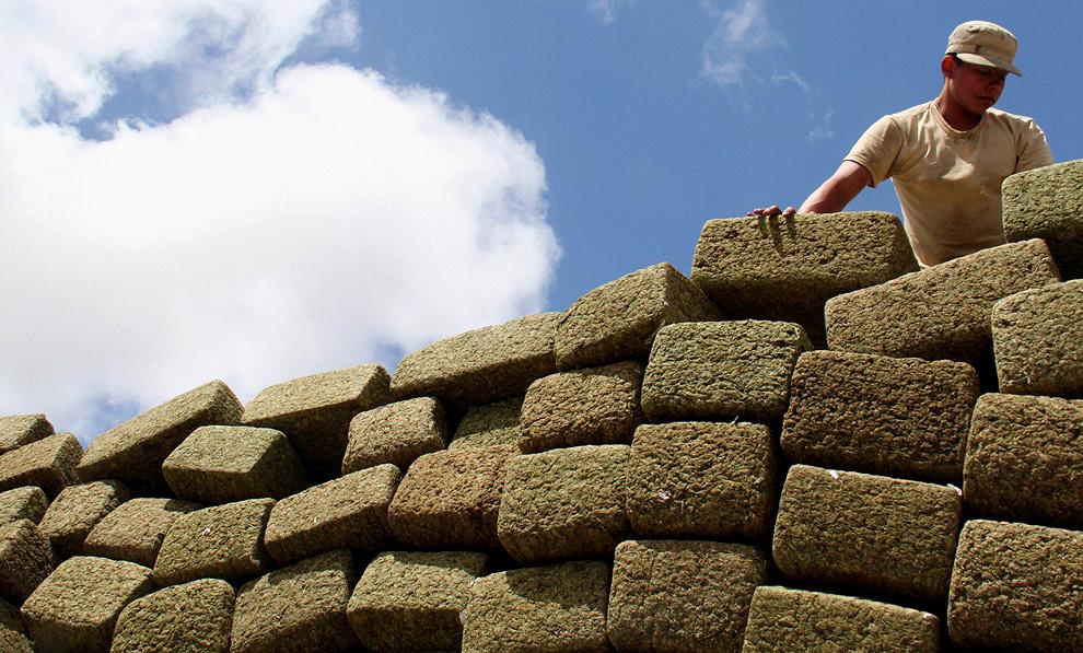 Bricks of Reefer